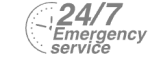 24/7 Emergency Service Pest Control in Greenford, UB6. Call Now! 020 8166 9746